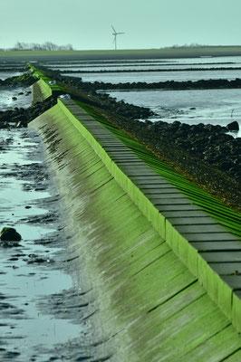 """das Meer ist zurückgewichen und die grün bemoosten """"Wellenbrecher"""" werden sichtbar"""
