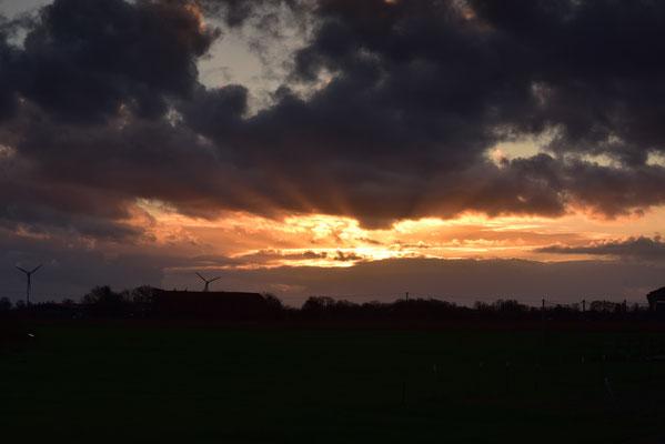 die Sonne grüßt zum Abschied - morgen fahren wir heimwärts