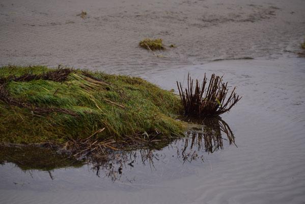 malerische Insel im Wasser
