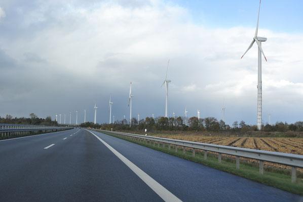 Anfahrt kurz vor Emden, wir fahren durch einen Windmühlenwald