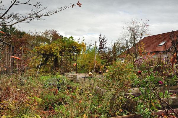 KW45-02.11.2020, ca 13°C viel Gartenarbeit