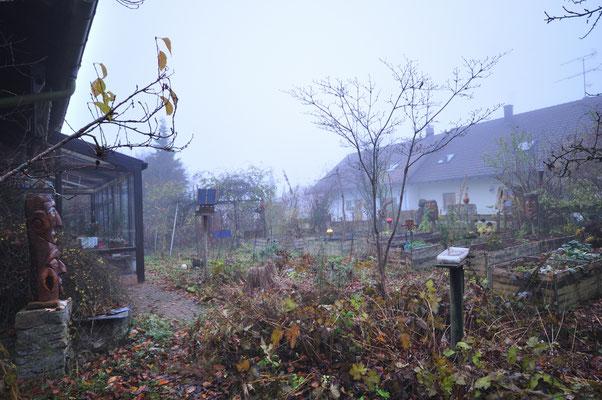02.12.2019KW49 Nebel hat sich breit gemacht, es ist kalt und feucht