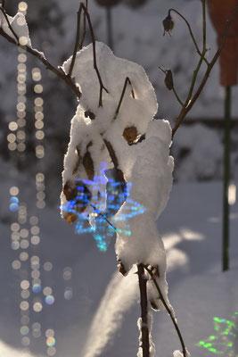 Blick aus dem Wintergarten in den schneebedeckten Garten