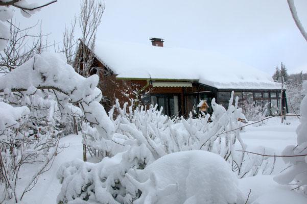 Blick durch den schneebedeckten Garten auf das Haus zu