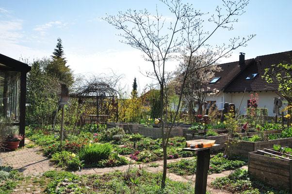 """KW16-13.04.2020 Ostermontag leicht bewölkt, die Natur ist in """"grün explodiert"""""""
