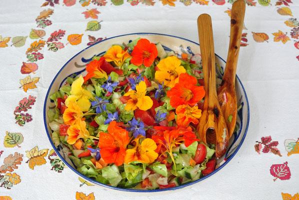 so kann man die Blumen aus dem Garten auch verwenden! Der Salat  mit der Kapuzinerkresse schmeckt vorzüglich.