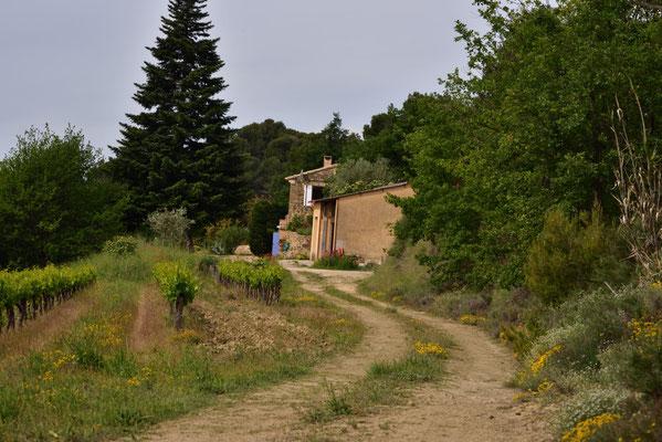 der Weg in das Tal