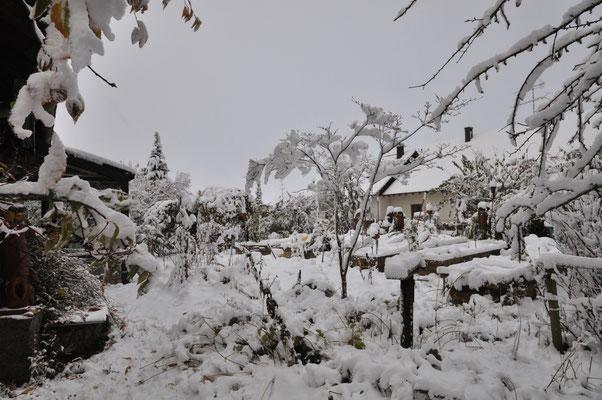 18.11.19 KW47 der erste Schnee ist da