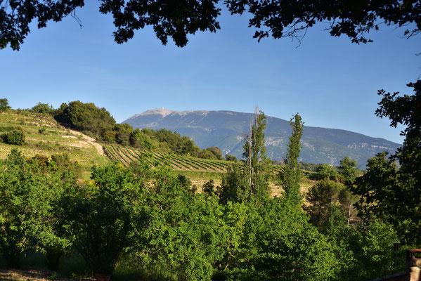 Mont Ventoux im vollen Sonnenlicht