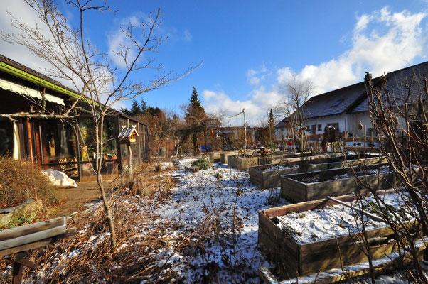 KW4-2020 Die Sonne scheint, morgens sehr kalt, etwas Schnee es bläst ein Böhmischer (Ostwind)