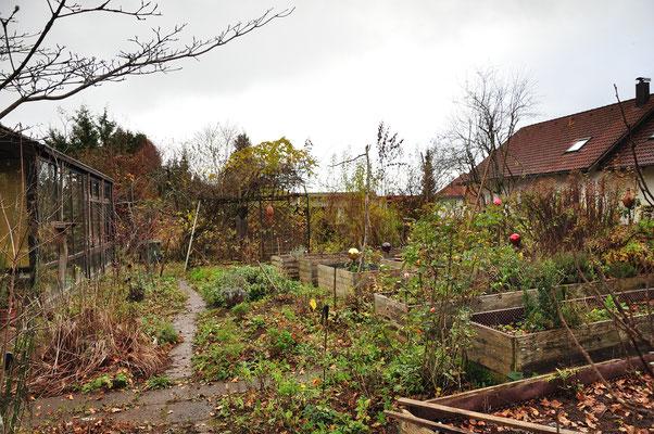 KW47-16.11.2020, 8°C leichter Regen kaum Luftbewegung, Garten ist abgeräumt, Blätter sind von den Bäumen fast weg