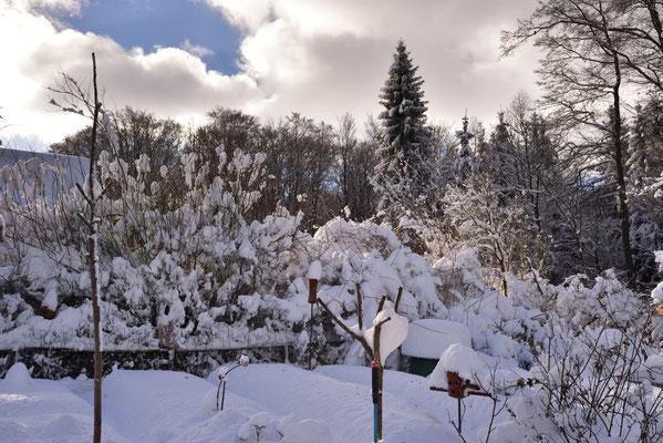 Schneegartenblick