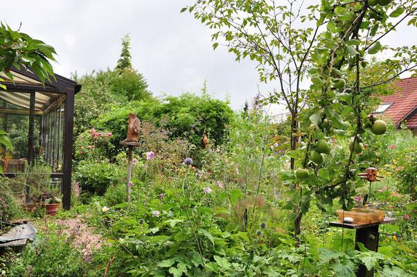 KW 32-04.08.2020  17°C, starker Wettersturz, regnerisch, stark bewölkt, die Apfelbäume haben schwer an Früchten zu tragen