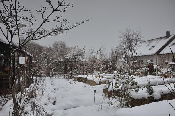 KW50- 09.12.2020, 1°C nebelig ungemütliches Wetter, nachdem gestern die Sonne da war