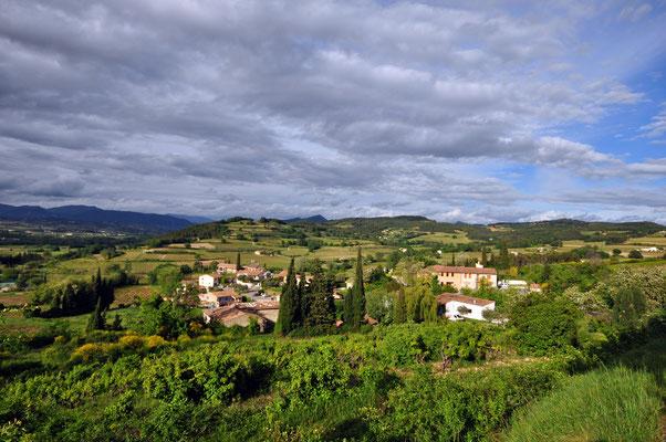 Blick vom Dorf auf den gegenüber liegenden Oliven- und Weinhügel