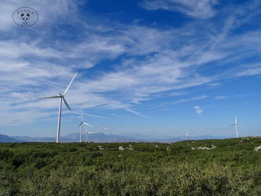 Windkraftanlage bei Mandra. Raddurchmesser 110 m