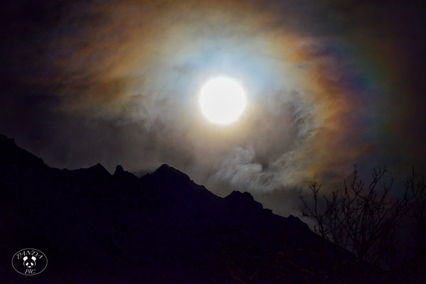 Moonrise am Wetterhorn