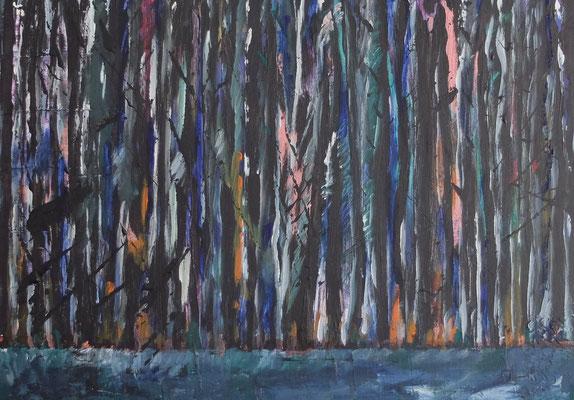 Dunkler Auwald / Dark Auwald, Acryl und Tusche auf LW in 60x80