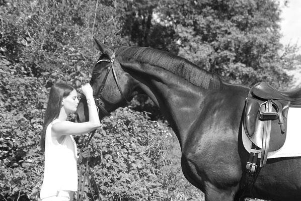 Pferdeschmuck - aus purer Liebe und Zuneigung zu Ihrem Pferd