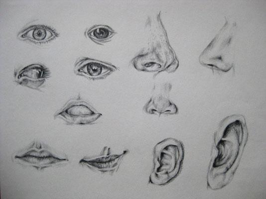 Studie, Bleistift auf Papier, Dina 4, 2011