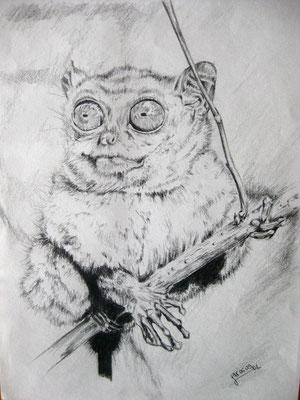 """Kobold Maki"", Bleistift auf Papier, Dina 4, 2009"