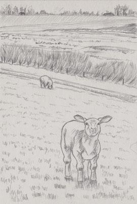 o.T., Bleistift auf Papier, Dina 5, 2010