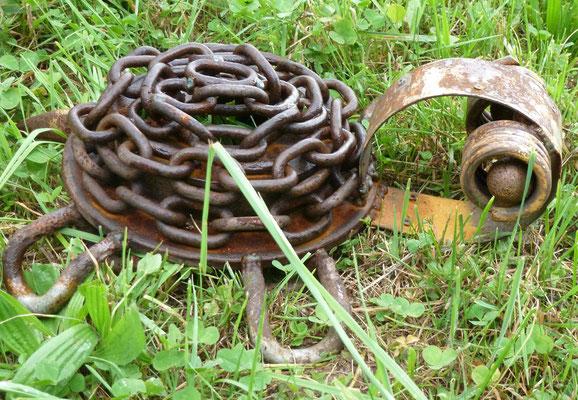 Schildkröte  Masse: 32x42cm (verkauft)
