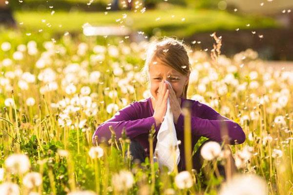 Alergias a pólen são bem comuns por aqui. Foto: stern.de
