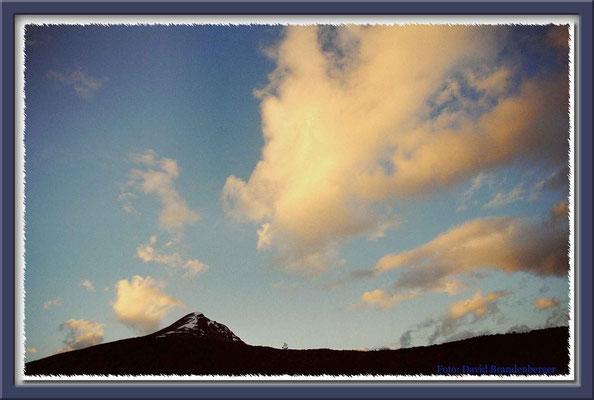 85.P.N. Tierra del Fuego,Argentinien