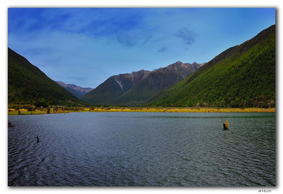 NZ0644.Nelson Lakes N.P..Lake Rotoiti upper End