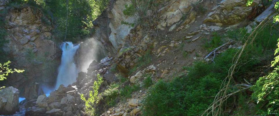 CA0220 Hardy Falls