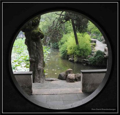 C1924 Suzhou Garten des bescheidenen Beamten