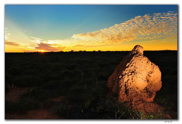 AU0370.Sonnenuntergang bei Termitenbau