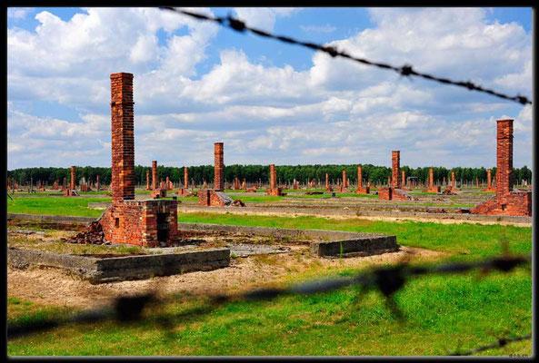 PL034.Birkenau.zerstörtes Barrakenfeld