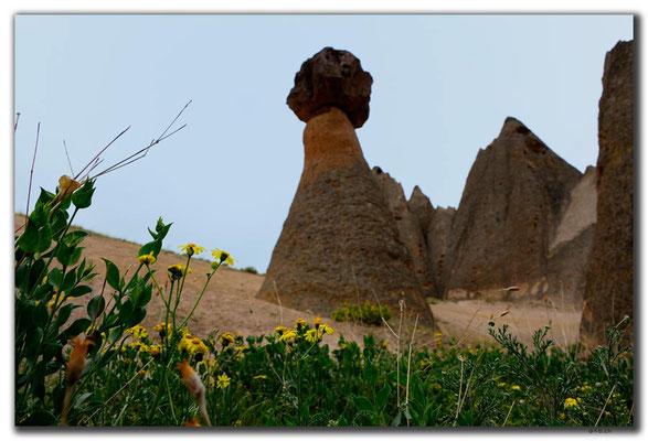 TR0724.Ihlara Valley.Monolith