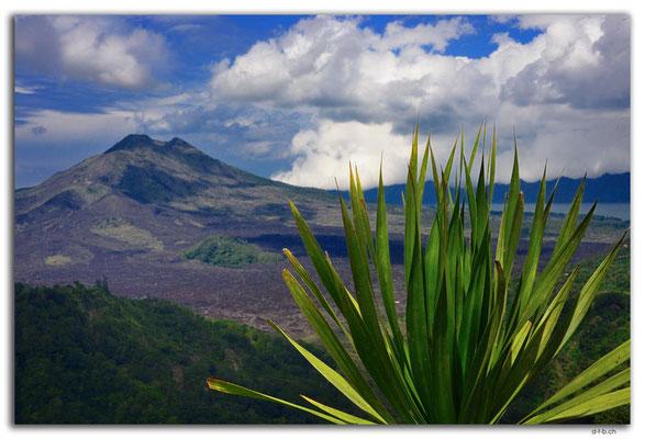 ID0202.Kintamani.Vulkan Batur