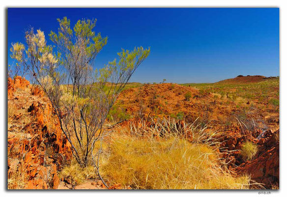 AU0206.Halls Creek.China Wall