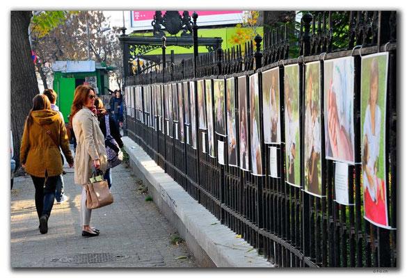 RO0209.Bukarest.C.N.Roncea