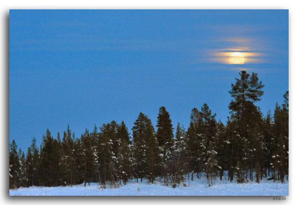 SE0108.Orange Moon