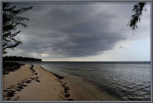 JM036.World Beach