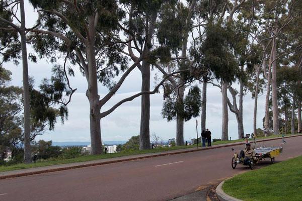 AU: Perth. Leaving Kings Park (Photo: Tom Hogarth)