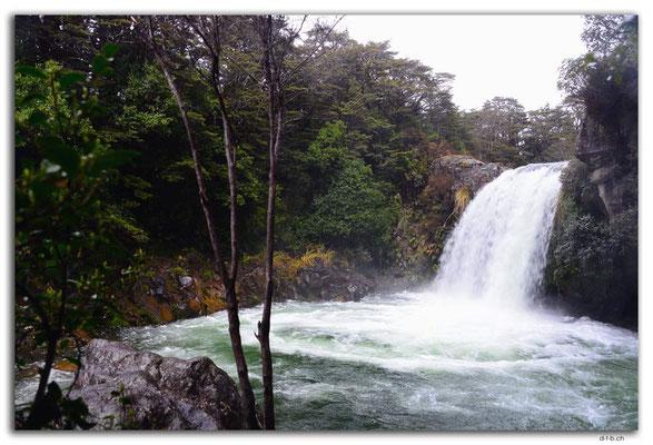 NZ0316.Tongariro N.P.Tawhai Falls