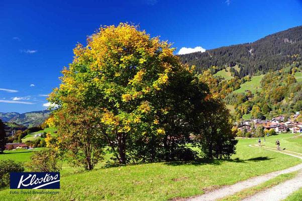 P0072.Promenade.Klosters.CH