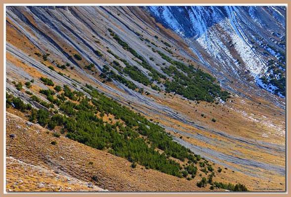 A0694.Nationalpark.CH