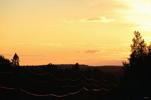 CA0499 Algonquin Sunset
