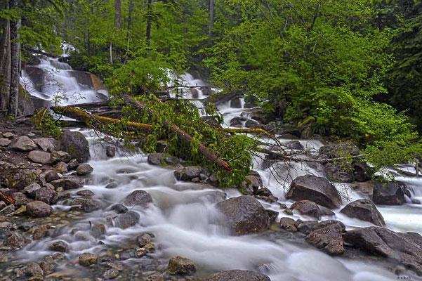 CA0134 Squamish Shannon Falls