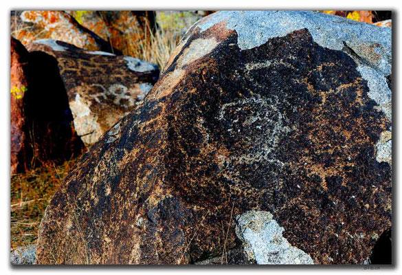 KG0073.Cholpon Ata.Petroglyphen