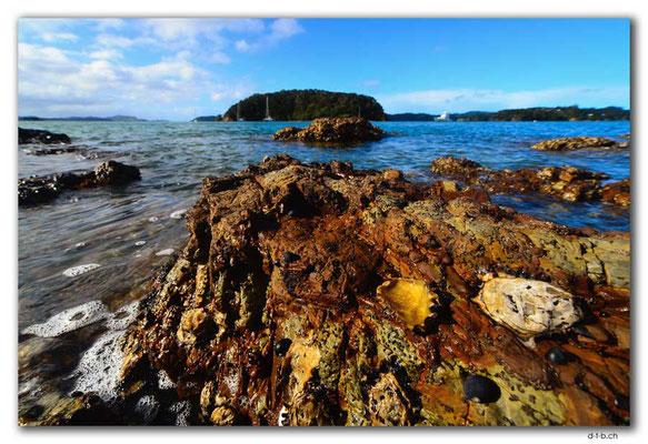 NZ0138.Motuarahi Island