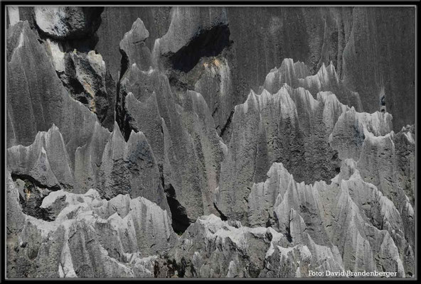 C0879Stone Forest
