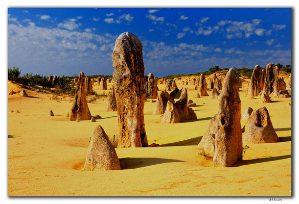 AU0597.Nambung N.P.Pinnacles